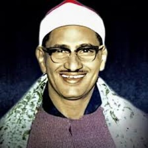 الدليل العربي-مواقع اسلامية-علماء ودعاة-الشيخ محمد صديق المنشاوي