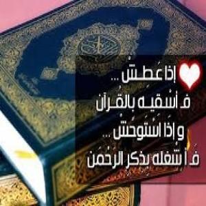 الدليل العربي-مواقع اسلامية-صوتيات إسلامية-القران الكريم