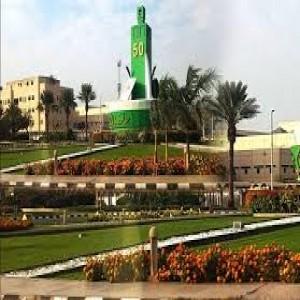 الدليل العربي-مواقع علمية-معاهد وجامعات-جامعه الملك عبد العزيز
