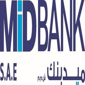 الدليل العربي-بنك مصر ايران للتنمية