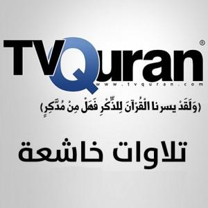 الدليل العربي-تي في قران