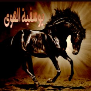 الدليل العربي-منتدى يوسفية الهوى