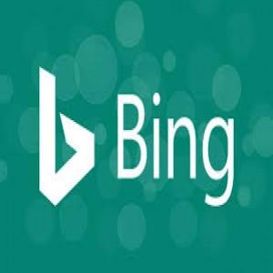 الدليل العربي-bing بينق